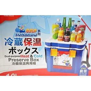 Heat & Cold Mini Car Cooler Food Fruit Can Soft Drink Storage Preserve Box