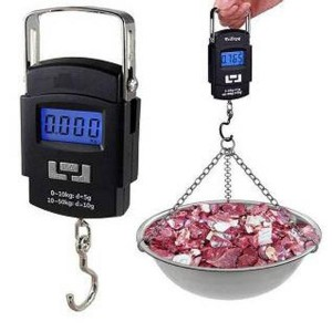 Digital Hanging Weight Scale