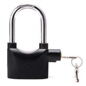 Alarm Lock Large Hook