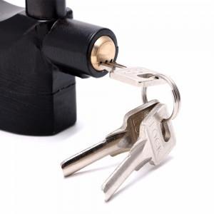 Alarm Lock Large Hook